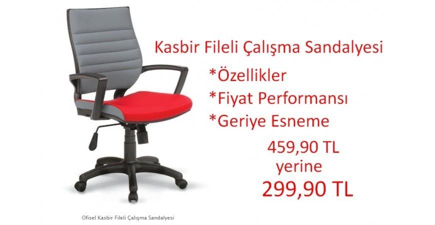 Kasbir Fileli Çalışma Sandalyesi